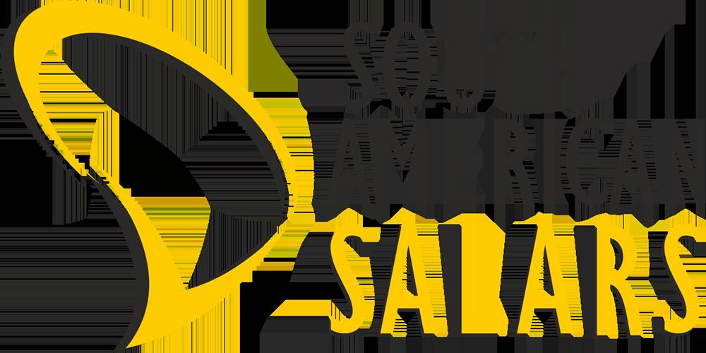 Logo South American Salars