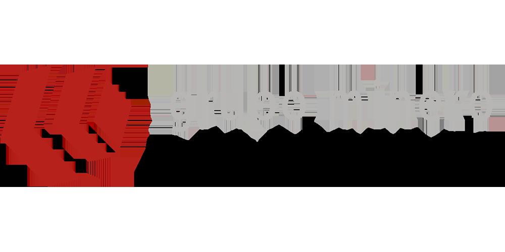 Logo Grupo Los Boros